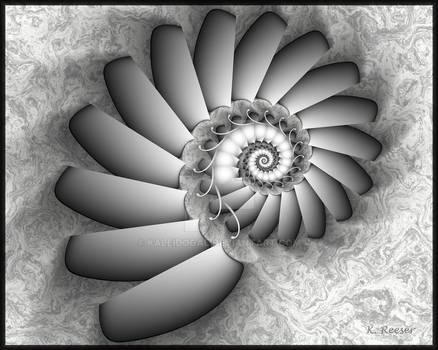 Blackwhite harlequin spiral