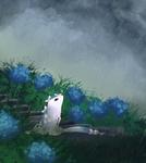 Hydrangeas love rain
