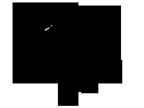 CanineCanvas's Profile Picture
