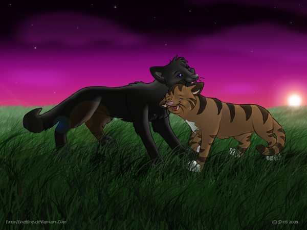 Leafpool's Secret Heart by Stelline