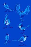 Blue Jays by diehardzelda