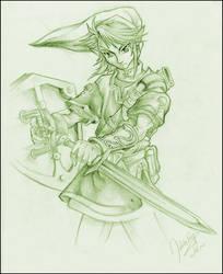 ::Legend of Zelda:: Link by goldhedgehog