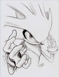 - Silver the Hedgehog - by goldhedgehog