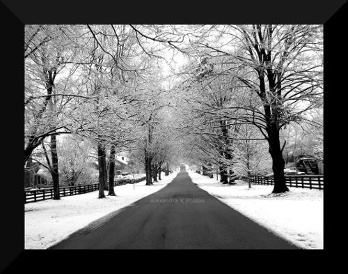Walking in Winter Wonderland by Laura-Kinney