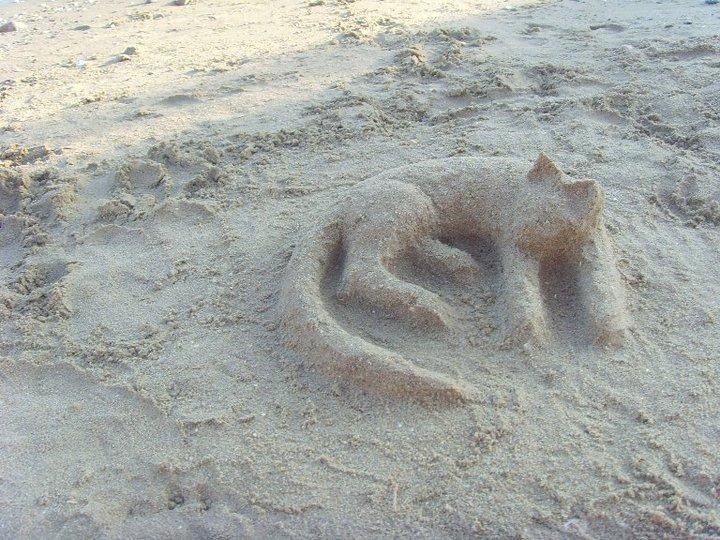 http://fc08.deviantart.net/fs71/f/2011/322/4/7/sand_sculpture___sleeping_cat_by_valentinaios-d4gk9se.jpg