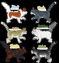 OPEN Cat Adopts 6/6