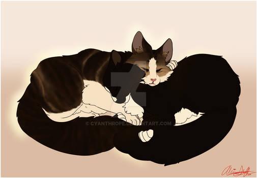 $cm Cocoa and Keanu