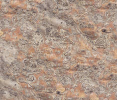Nopal Texture by Blaster2501