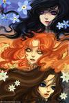 Commission : Elyra-Coacalina