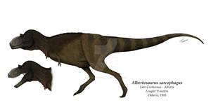 Albertosaurus sarcophagus reconstruction