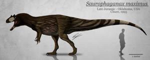 Saurophaganax maximus reconstruction