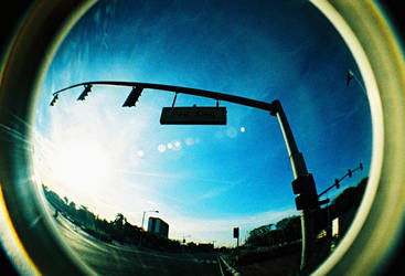 fisheye april - ped xing by jcgepte