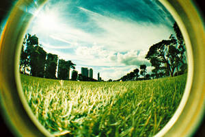 fisheye - above the ground by jcgepte