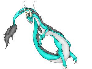 Random Dragon