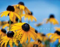 joyful by shaladesigns