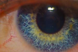 eye 3 by elliotb22
