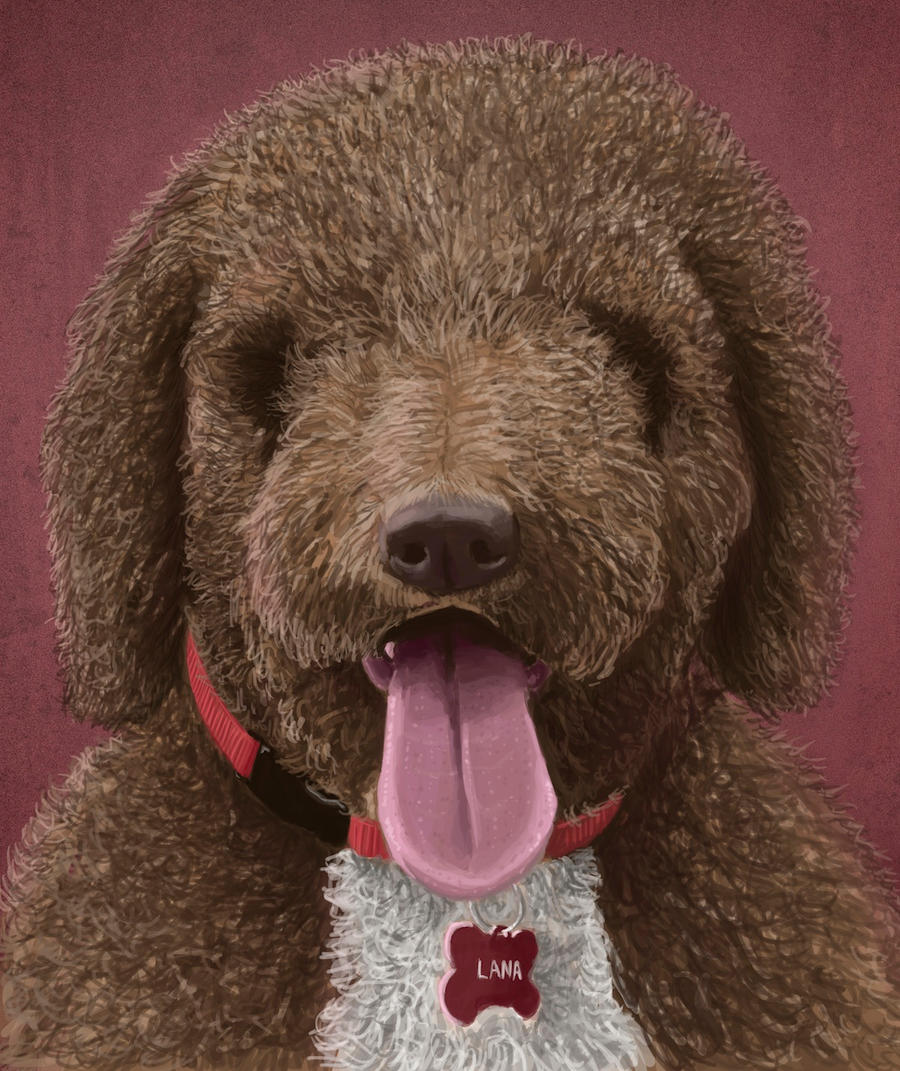 Spanish Waterdog by WirdouDesigns