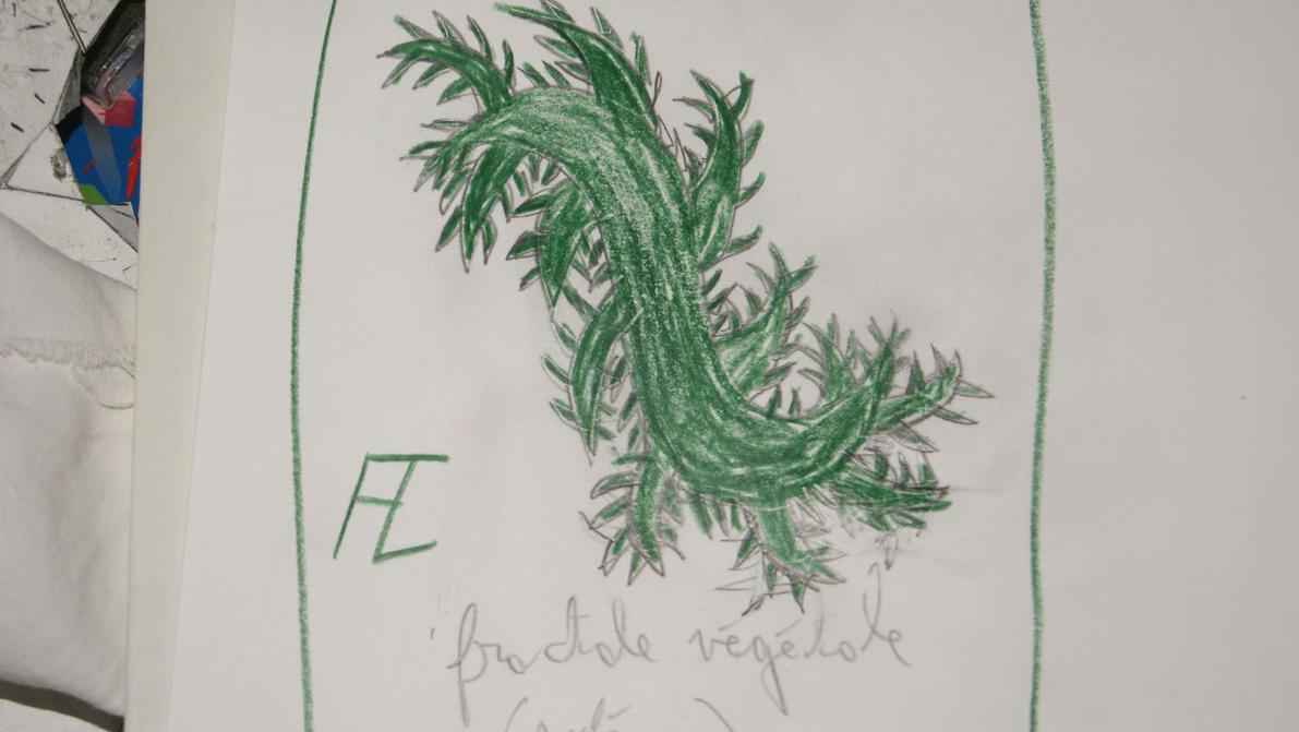 fractale vegetale (esquisse) by Loki7z