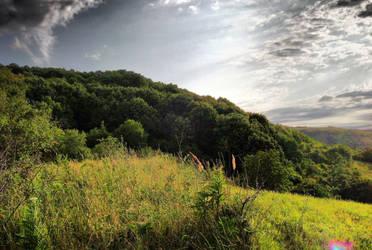 Panoramic_scenery2 by androidonfreerunner