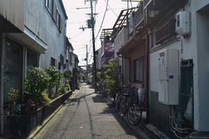 Kyoto 4 by Sinto-risky