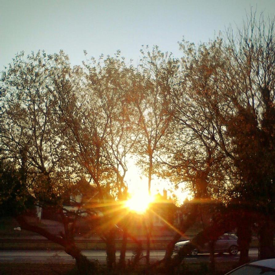 Winter Mornings by JordanAlice