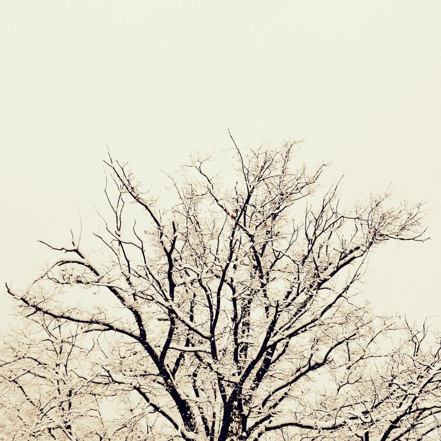 The tree by fireandrain97