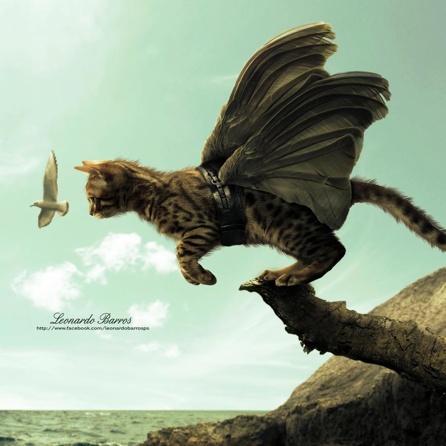 Cat flying by LeonardoBarrosdesign
