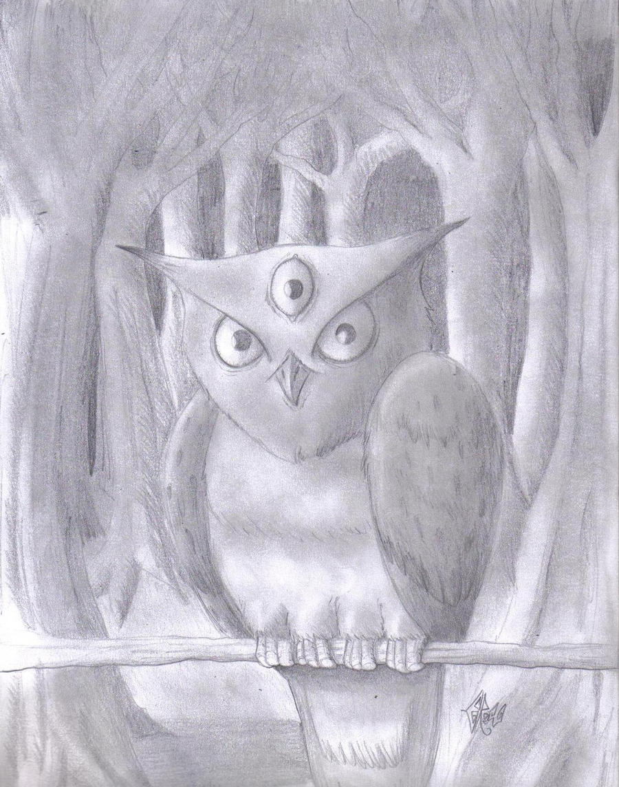 Owl by Edwardcrow
