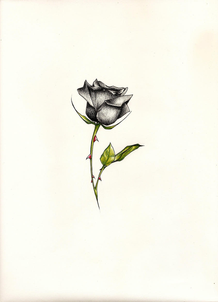 Small black rose tattoo designs