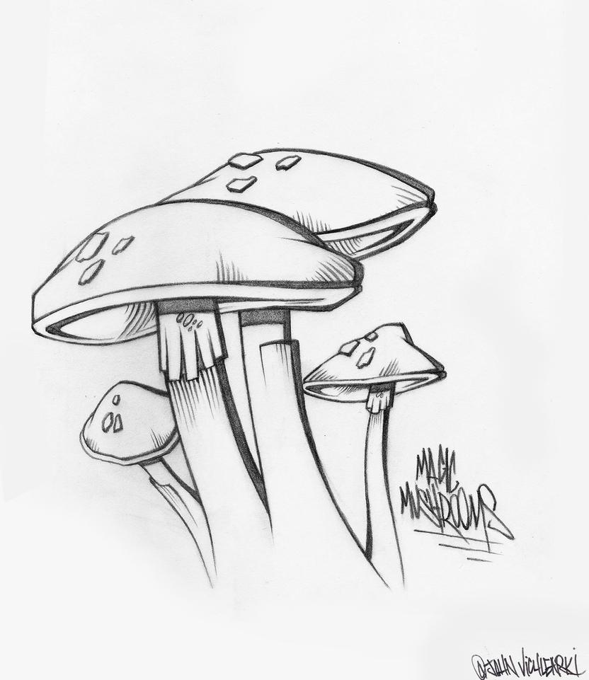 Magic Mushroom Drawings Mushrooms Drawings Magic