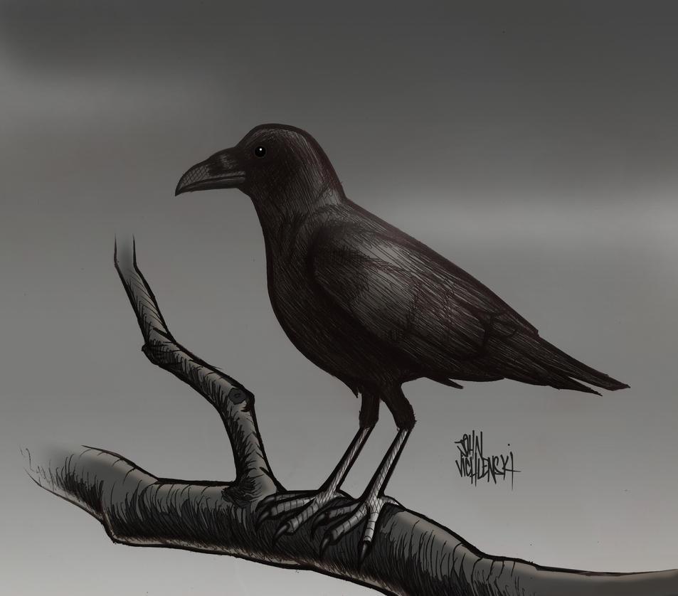 Crow by JohnVichlenski