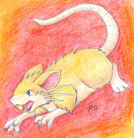 Raticate by nepryne