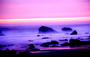 Evening Sea by roseonin
