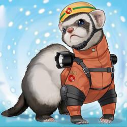 Rescue Ferret by Yugi-Master