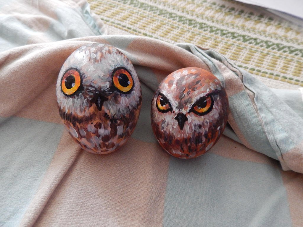 Owl eggs by Kolokolna