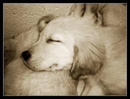 Sleep Away Sweet Angel... by CitrineNightmare90