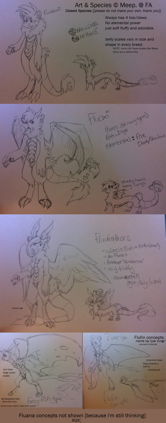 [OLD]  Fluudrani subspecies concepts by MystikMeep