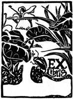 Ex Libris of the Lilies by evanjensen