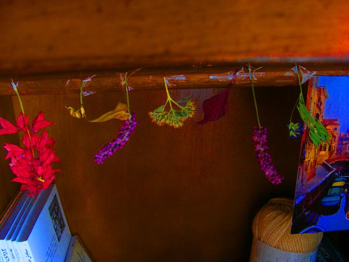 Nowruz, coming... by LittleLamplighter