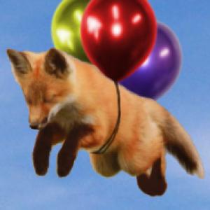 LolFox24's Profile Picture