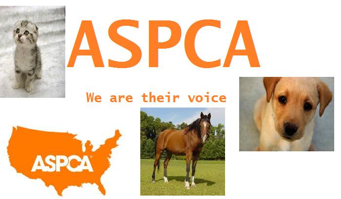 ASPCA by veronicle