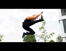 Air Kick by Sanji013