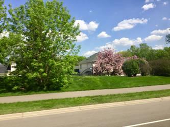 A beutiful suburban spring 2 by DavetheBunnyboy