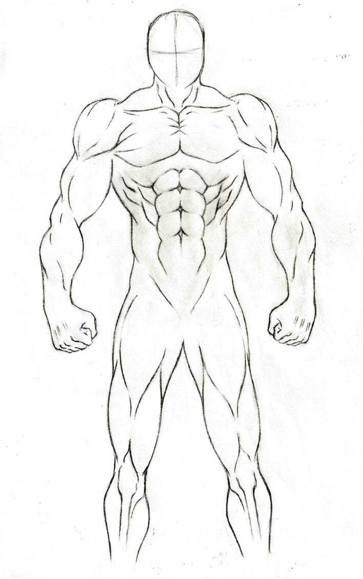 Male anatomy practice sketch by JB4C on DeviantArt