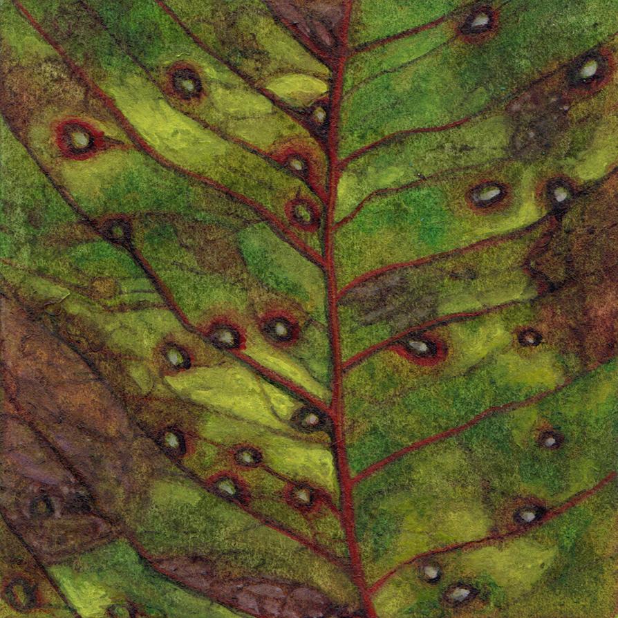 Leaf by ThaliaTook