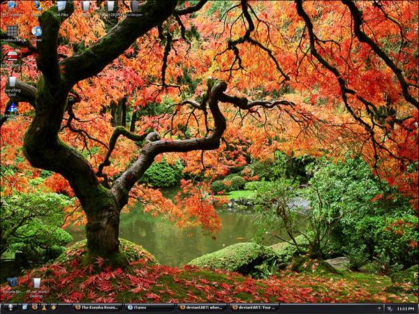 Fall Lake Side View Desktop by TurCha