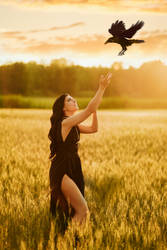 La chamane du corbeau 4