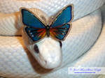 BUTTERFLY CRESCENT 2 by Heather-Chrysalis
