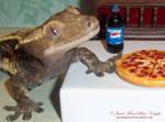 PIZZA FOR CAPPUCCINO