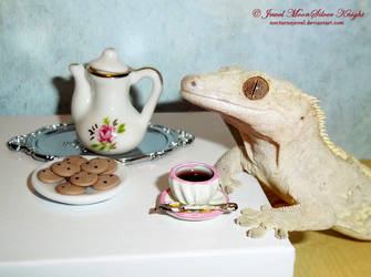 TEA FOR DAISY by Heather-Chrysalis